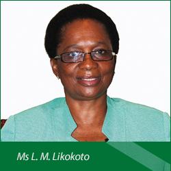 Ms-L-M-Likokoto