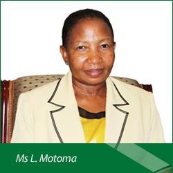 Ms-L-Motoma2